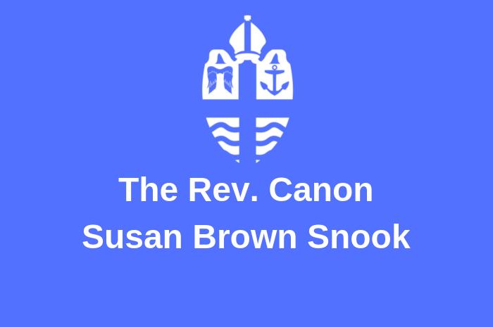 snook blog 3